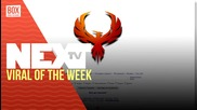 NEXTTV 021: Viral of the Week