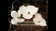 Sonata Arctica - Letter To Dana( Bg Превод )