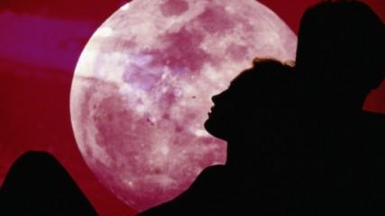 Новините в 90секунди: Розова луна ще видим в небето тази нощ