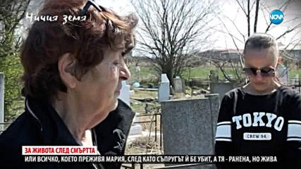 Живот между съдилища и гробища в