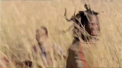 Hq Най - реклама на Pepsi 2010 Африка - Меси, Кака, Аршавин, Дрогба, Лампард, Анри и Акон