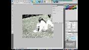Tapotiq s photoshop