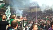 Уникалните фенове на Панатинайкос - Panathinaikos Fans