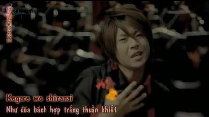 truth arashi
