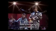 Hollies - Amnesty - 1978