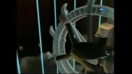 Джими Неутрон - Сезон 2 Епизод 4 - Бг Аудио
