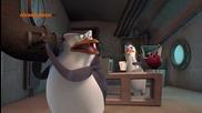 Пингвините от Мадагаскар ep21