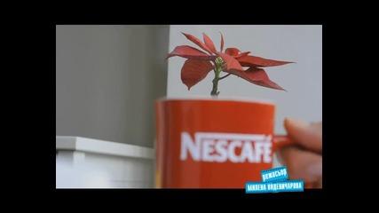 "Nescafe 3in1 Стани режисьор Победител ""червената чашчица"""
