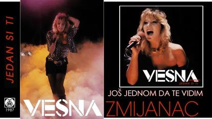 Vesna Zmijanac - Jos jednom da te vidim - (Audio 1987)