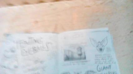 Тайните на Гравити Фолс (дневник номер 3, карта на града и езикът на Бил Шифър)