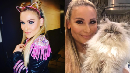 Is Natalya a cat lady? An investigation
