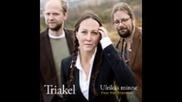 Triakel - Visor fran Frostviken ( full album 2011 ) nordic folk music