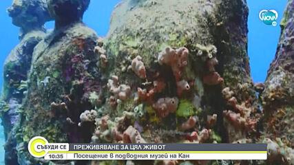 Отвориха подводен музей в Кан