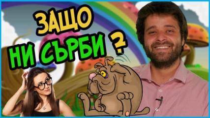 Защо ни сърби и как точно действа чесането?