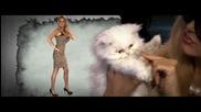 Ваня и Dj Дамян - Котето ( Official Hd Video) 2011