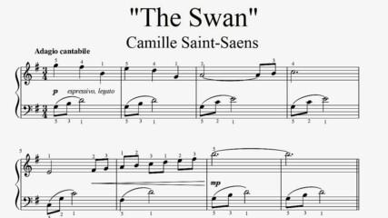 """Camille Saint-Saens - The Swan"" - Piano sheet music (by Tatiana Hyusein)"
