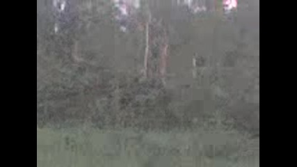 6tetite Sled Tornadoto Selo Krivnq