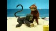 На Маймунката Им Се Ебе