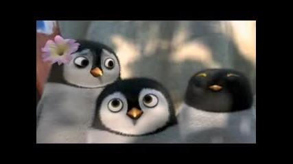 Слади Пингвинчета от Всички на сърф