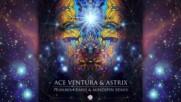 Astrix Ace Ventura - Pranava Ranji Mind Spin Remix