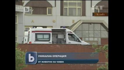 Уникалнo! Момиче със свинска сърдечна клапа - Присадиха й я в Русия