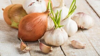 Тези 5 зравословни храни ще ви помогнат в битката с инфекциите
