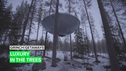 Grinch Getaways: The best Swedish escape is a treehouse