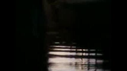 skok ot dunav most