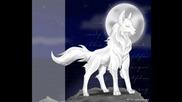 Бели Вълци!