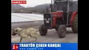 Кангал Дърпа Трактор(3, 5 Тона)