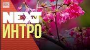 NEXTTV 036: Интро