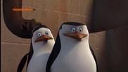 Пингвините от Мадагаскар ep16