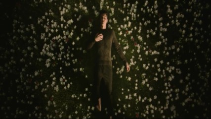 Shawn Mendes - In My Blood (Оfficial video)