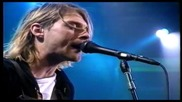 Nirvana - Pennyroyal Tea (mtv Live Loud) Hd