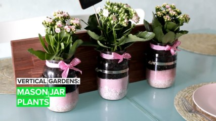 Vertical Gardens: Mason Jar Plants
