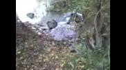 Jujekass - Скок В Реката