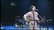 Едно приказно изпълнение - Rimi Natsukawa - Shima Uta (live)