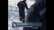 Акция в Силистра за спасяването на измръзнал лебед