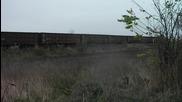 Товарен влак за гипс минава покрай село Покрайна (видинско)