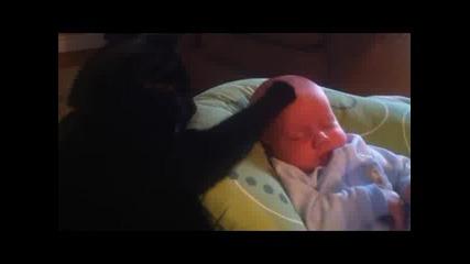Виж как котка успокоява плачещо бебе