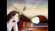 Музика И Любов
