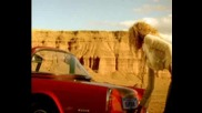 Ishtar & Sissoko - Habibi [ Official Music Video ]