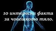 10 интересни факта за човешкото тяло.