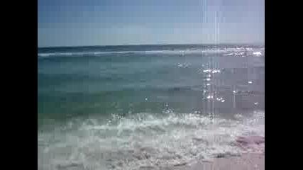 Акула На Плажа !!!