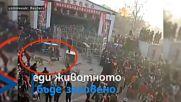 Тигър избяга от цирково шоу и се озова сред тълпа от хора