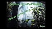 Звуци от природата - Ехо от джунглата