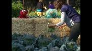 """Мишел Обама и герои от """"Улица Сезам"""" промотират здравословното хранене"""