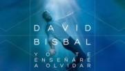 David Bisbal - Yo Te Ensenare A Olvidar