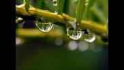 Шопен -chopin's Raindrops