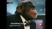 Medya Maymunlari Hastane Kozmetik Acil Estetik